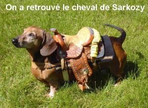 cheval-de-sarko